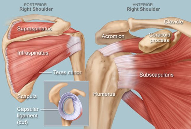 How to Eliminate Shoulder Pain With This Simple Exercise
